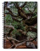 Angel Oak Tree Treasure Spiral Notebook