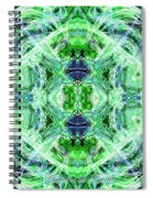 Angel Of The Earth Spiral Notebook