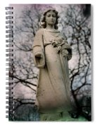 Angel Stare Spiral Notebook