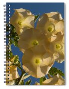 Angel Trumpets In The Sky Spiral Notebook