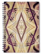 Angel Wings 3 Spiral Notebook