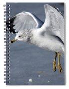 Angel Wings Spiral Notebook