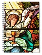 Angel With A Chalice Spiral Notebook