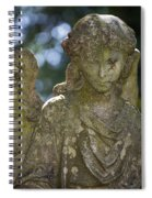 Angel With Broken Arm II Cave Hill Cemetery Louisville Kentucky  Spiral Notebook