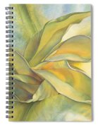 Angel's Pirouette Spiral Notebook