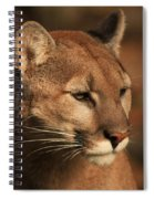Angle Of Pursuit Spiral Notebook