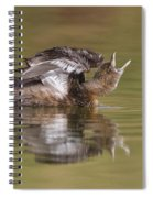 Angry Grebe Spiral Notebook
