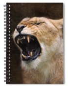 Angry Lioness Spiral Notebook
