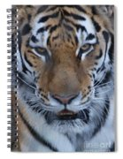 Angry Spiral Notebook