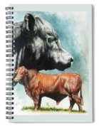 Angus Cattle Spiral Notebook