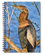 Anhinga At The Pond Spiral Notebook