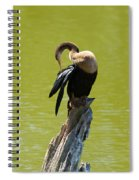 Anhinga Grooming Feathers Spiral Notebook