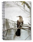 Anhinga On A Misty Morning Spiral Notebook
