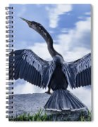 Anhinga Take Off Spiral Notebook