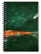 Animal - Fish - Koi - Another Fish Story Spiral Notebook
