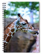 Animal - Giraffe - Sticking Out The Tounge Spiral Notebook