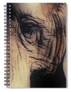 Animals Wrinkle Too Spiral Notebook