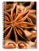 Anis Star Spiral Notebook