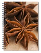 Anis Stars  Spiral Notebook