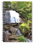 Anna Ruby Falls - Georgia - 4 Spiral Notebook