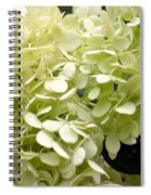 Annabelle Spiral Notebook