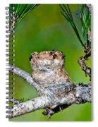 Annas Hummingbird Nest Spiral Notebook
