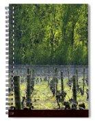 Anne Amie Vineyard 23126 Spiral Notebook