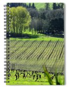 Anne Amie Vineyard Lines 23093 Spiral Notebook