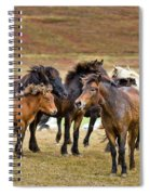 Annual Horse Round Up-laufskalarett Spiral Notebook