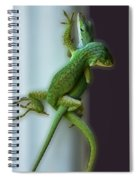 Anole Lovers Spiral Notebook