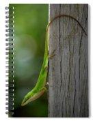 Anole Spiral Notebook