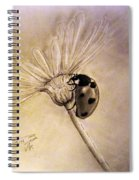 Another Ladybug Spiral Notebook