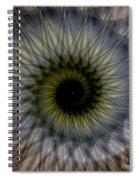Another Spiral  Spiral Notebook