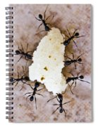 Ant Joint Venture Spiral Notebook