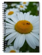 Ant Nothing Sweeter Than My Little Daisy Spiral Notebook