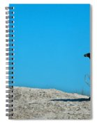 Antarctica Is Out There Somewhere Spiral Notebook