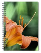 Anthers Aglow Spiral Notebook