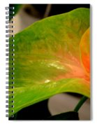 Anthurium In Red And Green Spiral Notebook
