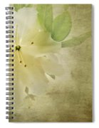 Antique Azalea Spiral Notebook