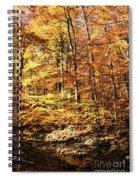 Antique Fall Spiral Notebook