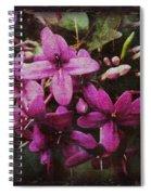 Antique Floral  Spiral Notebook
