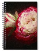 Antique Romance Spiral Notebook