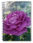 Antique Rose Spiral Notebook