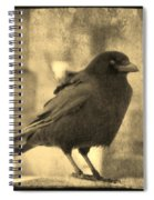 Antique Sepia Crow Spiral Notebook