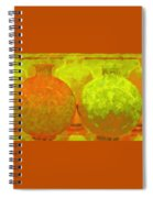 Antique Vases Spiral Notebook