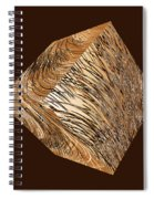 Antique White Gold Abstract Cube Spiral Notebook