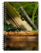 Ants Adventure 2 Spiral Notebook