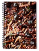Ants Spiral Notebook