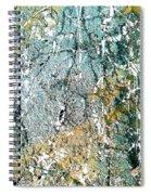Ap 2 Spiral Notebook
