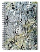 Ap 3 Spiral Notebook